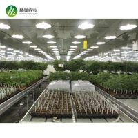 Greenhouse Products From Henan Wisemax Agricultural