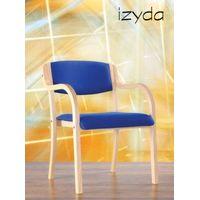 Izyda Arm Chair thumbnail image