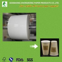 pe coated paper for cups thumbnail image