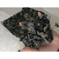 Bulk Dried Black Fungus Mushroom (Wood Ear) to Europe (2.5VM Above) thumbnail image