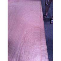 sapele plywood thumbnail image