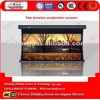Welfare factory made  Middle east and Africa popular  Projector screen motorized thumbnail image