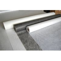 Non woven coated fusible Interlining