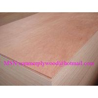 15mm Bintangor face Commercial Plywood