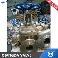 API 600 Cast Steel A216 Gr. Wcb Flanged Raised Face Gate Valve