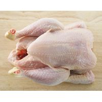 Halal Whole Frozen Chicken, Halal Frozen Leg Quarters, Halal Frozen Chicken Feet, Chicken Breast, thumbnail image