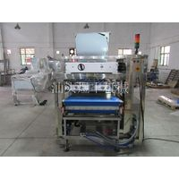 in Line Cream Injector-yufeng