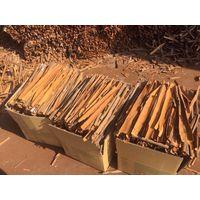Vietnam Split Cassia (Kakaotalk/wwhatsapp/skype/viber 0084986592268 0084916275888)