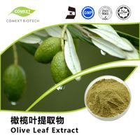 Hydroxytyrosol 5%~50% Dried Olive Leaf Extract Powder