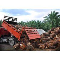 Palm kernel shell, fibre & efb trading in Sabah