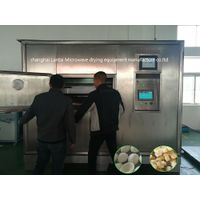 LANTAI Microwave food puffing equipment