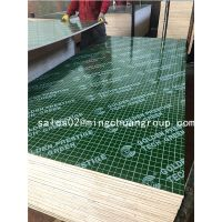 Plastic faced plywood film faced plywood Shuttering plywood Building Construction materials 18mm
