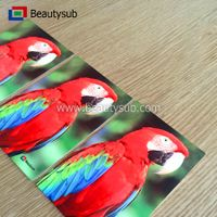 HD sublimation photo Aluminum