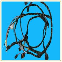 Automotive Wire Harness /Electric Cable Assemblies Harness