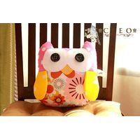 Cute Owl Kid Pillow thumbnail image