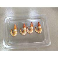 food skin pack film VSP film for food ,seafood skin pack film