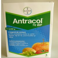 antracol fungicid