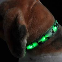 The flashing heart-transfer dog collar