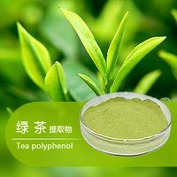100% Natural Green Tea Extract Tea Polyphenols 98%