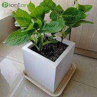 Hot Selling Outdoor Water Proof Fiberglass Flower Pot thumbnail image