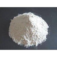Potato Starch (GMO Free)