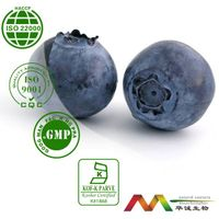 100% Natural Good Bilberry Extract Powder