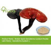 free sample Broken Spore Ganoderma Lucidum Powder
