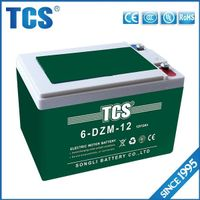 Rechargeable Electric Bike Battery