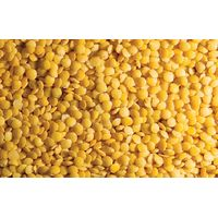 Yellow Lentils, Yellow Whole Lentils, Yellow Split Lentils and Yellow Peas