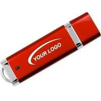 Custom rectangle usb disk flash drive from shenzhen factory 1GB/2GB/4GB