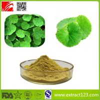 High Quality Centella Asiatica Extract Powder thumbnail image