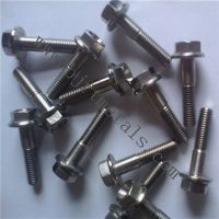 Titanium bolts, titanium screw, titanium sheet, titanium nut