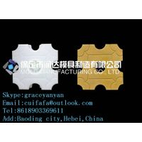Grass paver mold