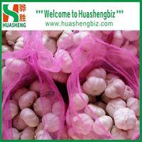 Chinese Fresh Normal White Garlic