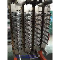 DDW Bottling Equipment for the food industry pneumatic 32 cavity valve gate self-locking PET mold