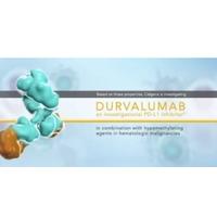 Durvalumab(AZD9291)