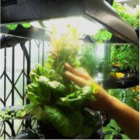 indoor grow lights and grow lights for sale