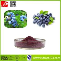 High Quality Blueberry Extract