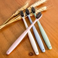 Eco-Friendly Biodegradable Wheat Straw Toothbrush thumbnail image