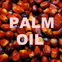 REFINED BLEACHED DEODORIZE PALM OLEIN (RED PO) CP-8 & CP-10