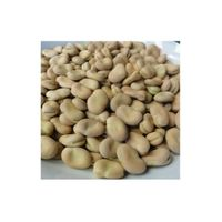 Whole Broad Beans thumbnail image