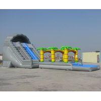 Inflatable water slide/ inflatable slide