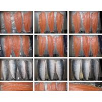 Frozen Salmon fillet thumbnail image