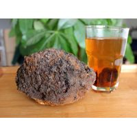 Chaga Mushroom Extract