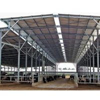 custom design steel structure shed poultry house for cow breeding