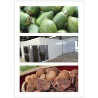 CE ISO Certificate copeland compressor machine for drying betel nut,areca nut dry machine. heat pump thumbnail image