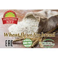 Quality wheat flour best price high grade 50 kg Russia origin