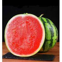 Fresh unicorn melon thumbnail image