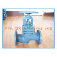 804-F (DIN) Cast Iron Globe Valve