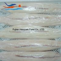 blue shark fillet